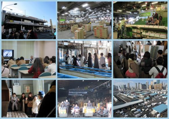 日本の胃袋・築地市場を見学しました! 青果や鮮魚の種類と量の多さに驚いてきました。