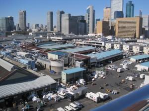 築地市場   広大な広さとその活気に驚きました。